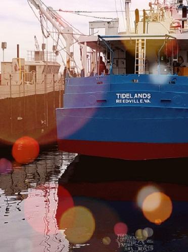 The-Tidelands-